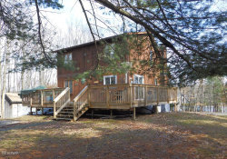 Photo of 105 W Shore Dr, Milford, PA 18337 (MLS # 18-635)