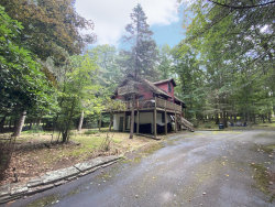 Photo of 173 White Tail Cir, Hawley, PA 18428 (MLS # 20-395)
