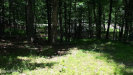Photo of 653 Alpine Dr, Milford, PA 18337 (MLS # 16-871)