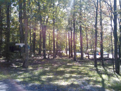 Photo of 177 Forest Glen Dr, Milford, PA 18337 (MLS # 16-893)
