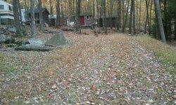 Photo of 1003 Meghan Ln, Milford, PA 18337 (MLS # 16-899)