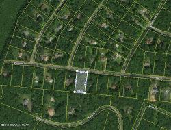 Photo of 125 Peach Tree Ln, Milford, PA 18337 (MLS # 19-2670)
