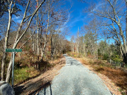 Photo of Tunnel Rd, Milford, PA 18337 (MLS # 19-2865)