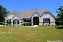 Photo of 268 Painted Rose St, Castroville, TX 78009 (MLS # 1241215)
