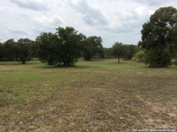Photo of 275 Stacey Rd, Poteet, TX 78065 (MLS # 1261123)
