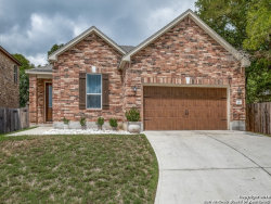 Photo of 717 Cavallo Springs Cove, San Marcos, TX 78666 (MLS # 1339905)