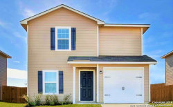 Photo of 2847 Lavender Meadow, San Antonio, TX 78222 (MLS # 1357859)
