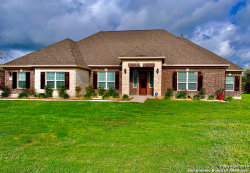 Photo of 258 MARY ELLA DR, Castroville, TX 78009 (MLS # 1370177)