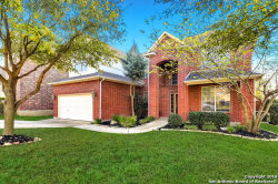 Photo of 1030 Olivia View, San Antonio, TX 78260 (MLS # 1372142)