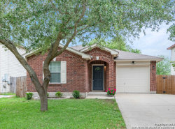 Photo of 3972 Trinity Trail, New Braunfels, TX 78132 (MLS # 1379125)