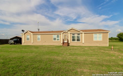 Photo of 11065 Briggs Rd, Atascosa, TX 78002 (MLS # 1398607)