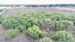 Photo of 262 COUNTY ROAD 326, Adkins, TX 78101 (MLS # 1412345)