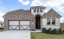 Photo of 13822 Quiet Fox Ln, San Antonio, TX 78245 (MLS # 1423804)