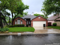 Photo of 13727 Chittim Meadows, San Antonio, TX 78232 (MLS # 1449518)