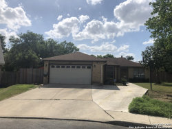 Photo of 15115 Spring Bluff, San Antonio, TX 78247 (MLS # 1459276)