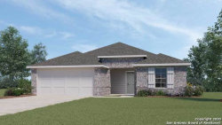 Photo of 852 ARMADILLO, Seguin, TX 78155 (MLS # 1465684)