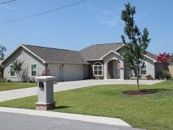 Photo of 7054 Hugh Drive, Panama City, FL 32404 (MLS # 686316)