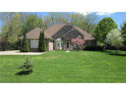 Photo of 53950 COUNTY LINE RD, New Baltimore, MI 48047 (MLS # 21292729)