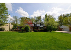Photo of 21703 E VALLEY WOODS DR, Beverly Hills, MI 48025 (MLS # 21308949)