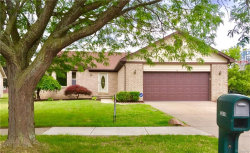Photo of 33419 PAOLETTI DR, Fraser, MI 48026 (MLS # 21311150)