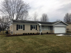 Photo of 48035 PHEASANT ST, Chesterfield, MI 48047 (MLS # 21405213)