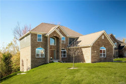 Photo of 62051 SAWGRASS DR, Washington, MI 48094 (MLS # 21409383)