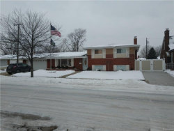 Photo of 20801 PALOMA ST, Saint Clair Shores, MI 48080 (MLS # 21412945)