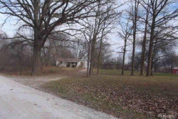 Photo of 71850 COON CREEK RD, Armada, MI 48005 (MLS # 21416309)