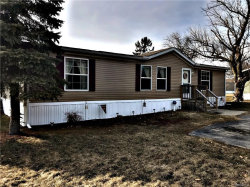 Photo of 6063 EASTWOOD DR, Burtchville, MI 48059 (MLS # 21427475)