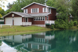 Photo of 3630 HYDE ROAD, Carsonville, MI 48419- (MLS # 21458048)