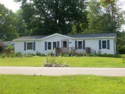 Photo of 3813 PINE ST., Burtchville, MI 48059- (MLS # 21492835)