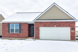 Photo of 9076 POTTERVILLE DR, Willis, MI 48191-9504 (MLS # 21576081)