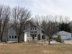Photo of 6687 POCKLINGTON RD, Britton, MI 49229-8701 (MLS # 21576838)