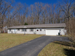Photo of 1303 MEANWELL RD, Dundee, MI 48131-9717 (MLS # 21585544)