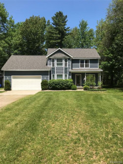 Photo of 3402 OLD ORCHARD LN, Lexington, MI 48450-9520 (MLS # 21619287)