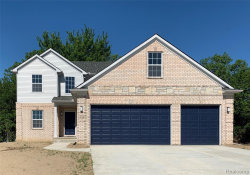 Photo of 529 FALCON DR, Dundee, MI 48131- (MLS # 30782846)