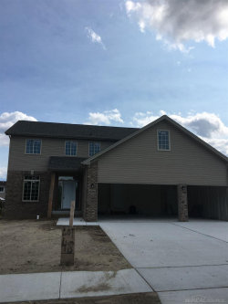 Photo of 30310 Redford, New Haven, MI 48048 (MLS # 31316938)