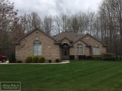 Photo of 68379 Stoecker Ln., Richmond, MI 48062 (MLS # 31317731)