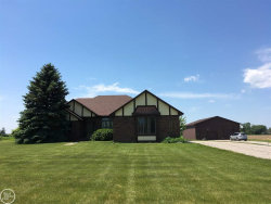 Photo of 80585 Wahl, Richmond, MI 48062 (MLS # 31320917)