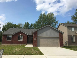 Photo of 30339 Redford, New Haven, MI 48048 (MLS # 31327534)
