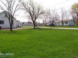 Photo of 57834 Lutes St, New Haven, MI 48048 (MLS # 31335812)