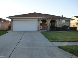Photo of 35827 Rainbow Dr, Sterling Heights, MI 48312 (MLS # 31336585)