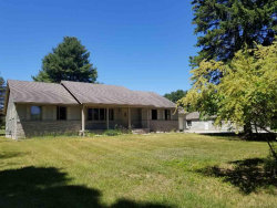 Photo of 2800 S Lakeshore Rd, Applegate, MI 48401 (MLS # 31342201)