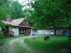 Photo of 5291 Forester Rd, Carsonville, MI 48419 (MLS # 31343499)