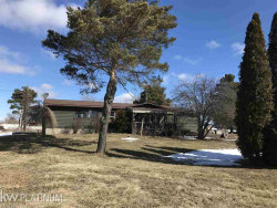 Photo of 3697 Downington Road, Deckerville, MI 48427 (MLS # 31343738)