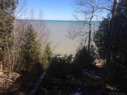 Photo of 6248 N Lakeshore Road, Palms, MI 48465 (MLS # 31347325)
