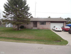 Photo of 7117 Ontario, Port Sanilac, MI 48469 (MLS # 31347639)