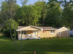 Photo of 7380 Shoreward, Lexington, MI 48450 (MLS # 31350080)