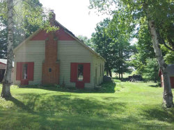 Photo of 5950 W Richmondville, Deckerville, MI 48427 (MLS # 31350503)