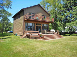 Photo of 6665 Lakeshore, Lexington, MI 48450 (MLS # 31350714)